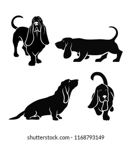 Basset hound dog set of isolated vector illustrations
