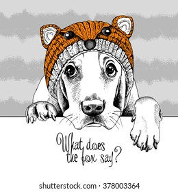 Basset Hound in a fox muzzle hat on gray striped background. Vector illustration.