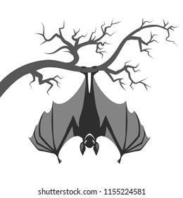 Bat on branch. Halloween bat hanging on tree isolated on white background, vampire dream vector illustration