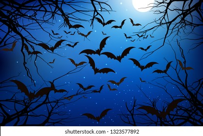 Bats in the forest in the night