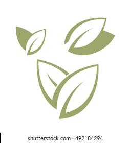 Bay leaf. Vector illustration. Abstract laurel leaves on white background.