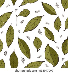 Bay leaves seamless background, herbs pattern