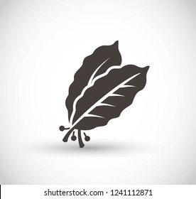 Bay leaves vector icon