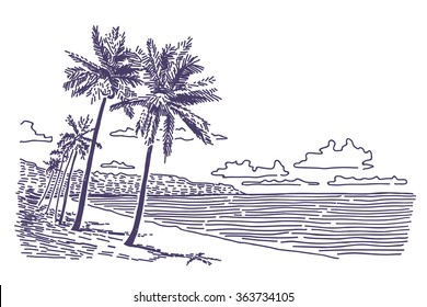 Beach with palms vector drawing