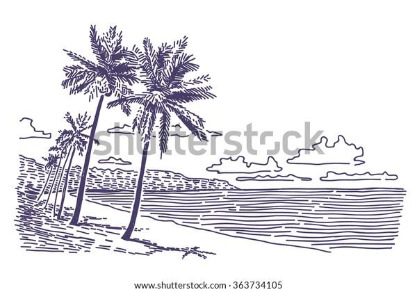 Image Vectorielle De Stock De Plage Avec Palmiers Dessin Vectoriel 363734105