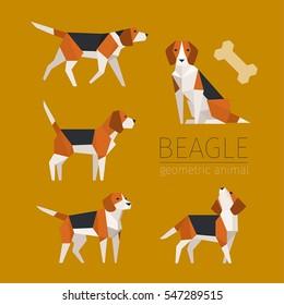 beagle dog animal low poly vector illustration flat design