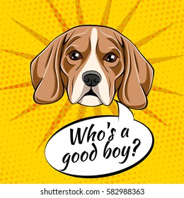 Beagle dog. Who is a good boy. Vector illustration isolated on pop art background