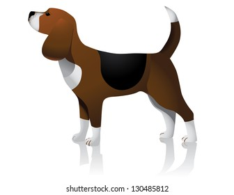 Beagle, EPS 8 vector, grouped for easy editing. No open shapes or paths.