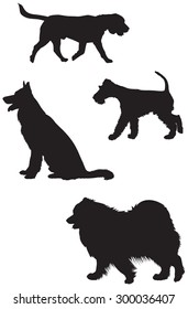 Beagle, German shepherd, Fox Terrier and Samoyed dog breed vector silhouettes