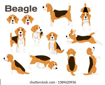 beagle illustration,dog poses,dog breed,beagle in action
