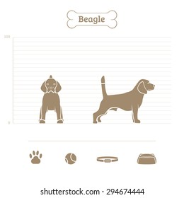 Beagle on the dimensional scale. Items for dogs. Face and profile. Vector illustration.