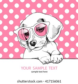 Beagle Puppy in a pink glasses. Vector illustration.