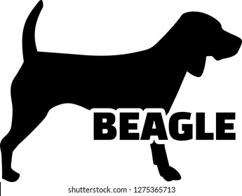 Beagle silhouette in black with name