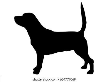 Beagle Silhouette Vector