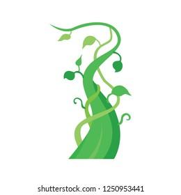 Beanstalk vector icon