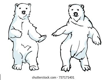 Bear Character.  Polar Bear dance doodle vector illustration white.