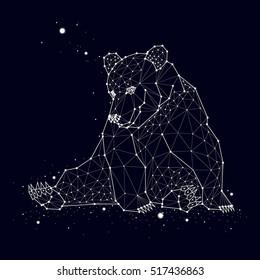 Bear constellation vector