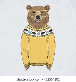 bear dressed up in jacquard pullover, anthropomorphic illustration, fashion animals