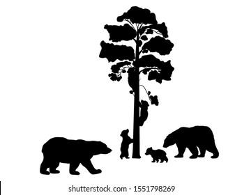 Bear family. Silhouettes of animals. Vector illustrator