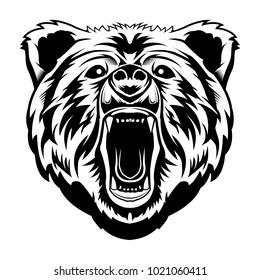 Bear Head Illustration Detailed Vector Isolated