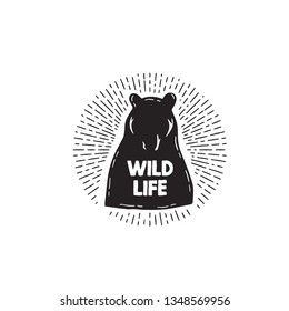 Bear icon. Hand drawn typography wild life with bear silhouettes. Vector illustration isolated on white background. - Vector