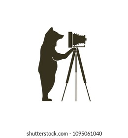 bear illustrations are taking pictures