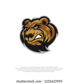 Bear Logo design vector. Bear sport logo