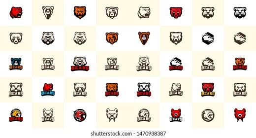 Bear logo template vector. Wild animal logo template