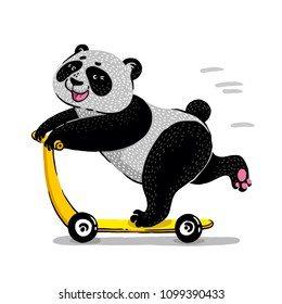 bear panda on scooter. Cute bear scooter vector design. animal illustration. T shirt graphic.