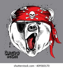 Bear portrait in a red pirate's bandana. Vector illustration.