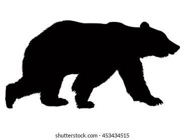 Bear silhouette, vector illustration.