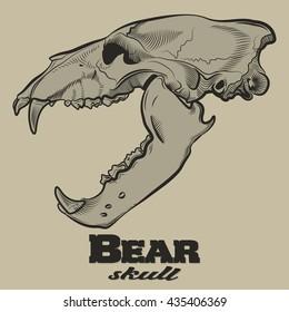 Bear Skull Engraving Style Etching Label