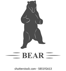 bear vector, bear hesitate posing, standing, looking to the bottom of white background, isolated. T - print