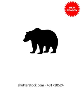 Bear vector icon isolated on white background.