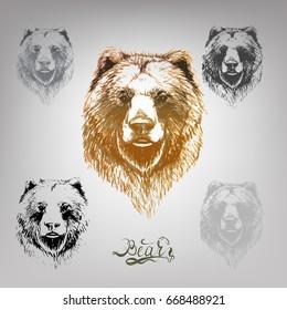 bear vector lettering