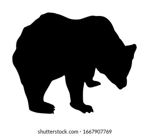 Bear vector silhouette illustration isolated on white background. Grizzly symbol. Big animal, nature wildlife concept.