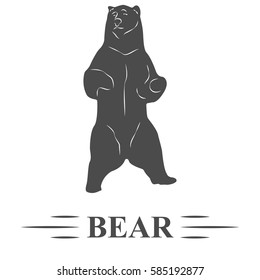 bear vector, standing bear, watching, white background isolated. T - print