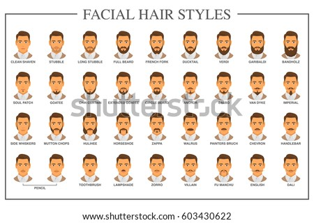 hair style book beard style guide hair types stock vector royalty 8724