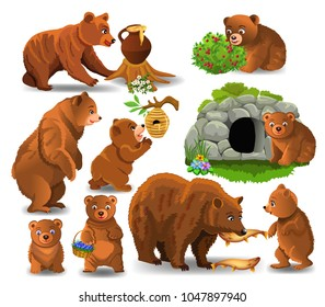 bears doing different activities isolated on a white background