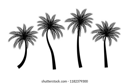palm tree silhouette images stock photos vectors shutterstock