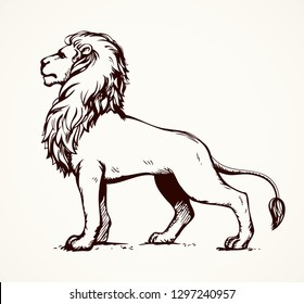 Beautiful african proud powerful nobility big leo standing and fierce looking for prey. Freehand ink drawn background sketchy in art scribble style pen on paper. Side view with space for text
