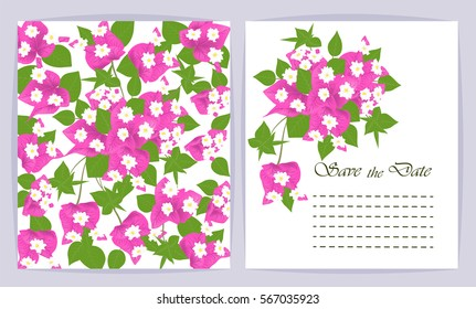 Beautiful background with Bougainvillea flowers and space for text. Vector illustration. EPS 10