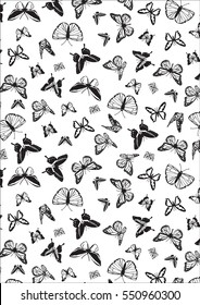 Beautiful background of butterflies black and white colors. Butterfly pattern