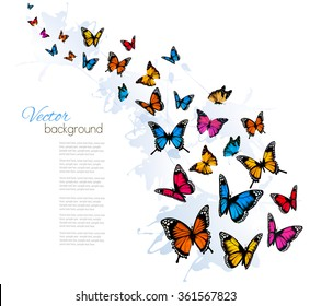 Beautiful background with colorful butterfly. Vector.