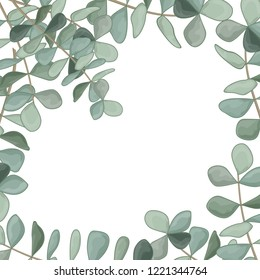 Beautiful background with leaves eucalyptus and space for text, isolated on white. Vector Watercolour.