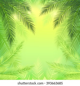 Beautiful background with leaves of palm trees, patches of light and gradients. Bright banner on the theme of travel and vacation.