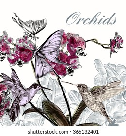 Beautiful background with orchid flowers hummingbirds and butterflies in watercolor style