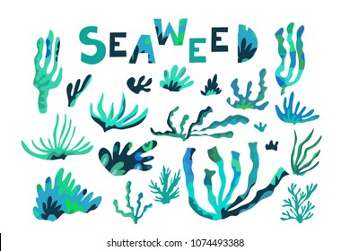 Beautiful big  set with differents seaweeds.  Cute  vector elements in flat cartoon style. For your design, posters, textile, wedding invitation, business products.  Vector illustration.