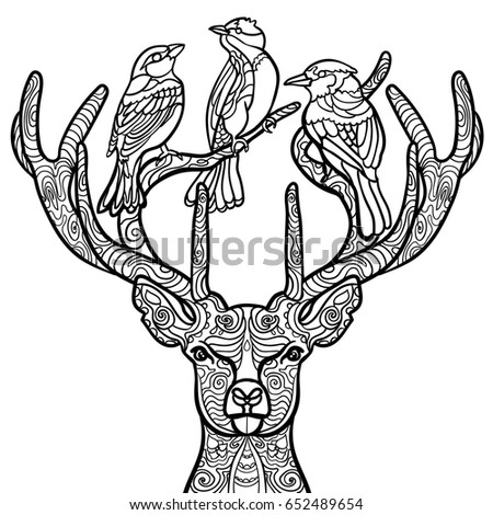 Coloring Page With Deer Book For Adult And Older Children