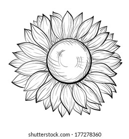 beautiful black and white sunflower isolated on white background. Hand-drawn contour lines and strokes.